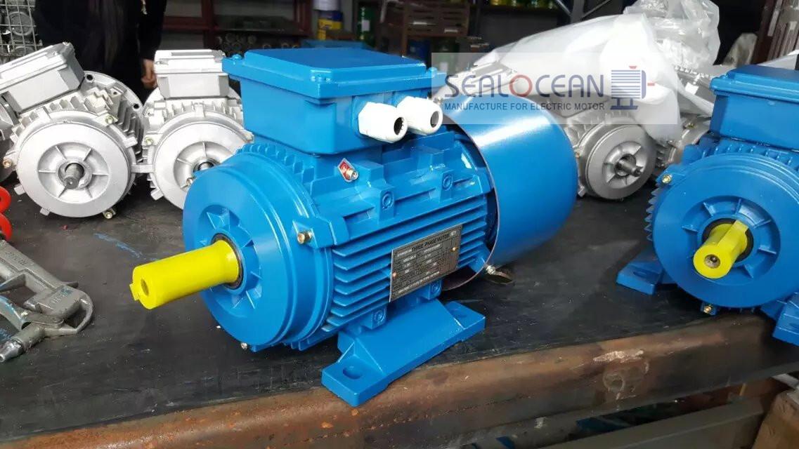 YC single phase 220V Electric Motor ac 0 55KW 0 75HP,China