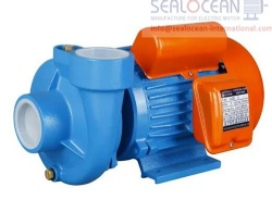CHINA FACTORY HOME CENTRIFUGAL PUMPS PX SERIES PUMPS, PX SERIES CONSOLE SURFACE PUMPS FROM CHINA, PX SERIES CENTRIFUGAL HOUSEHOLD SURFACE PUMPS FROM CHINA, PX PUMP FROM CHINESE PRODUCTION