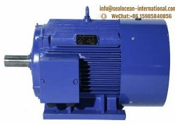 CHINA FACTORY THREE-PHASE SYNCHRONOUS PERMANENT MAGNET ELECTRIC MOTOR TYZD SERIES LOW-VOLTAGE LOW-SPEED DIRECT DRIVE (380V CENTER HEIGHT 355-800), ANALOG SIMENS, TOSIBA, ABB ELECTRIC MOTOR,CHINA FACTORY MINES, COAL ELECTRIC MOTOR