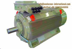 CHINA FACTORY HIGH POWER LOW VOLTAGE ELECTRIC MOTOR JC SERIES (380/660 V CENTER HEIGHT 355-560), ANALOG SIMENS, TOSIBA, ABB ELECTRIC MOTOR,CHINA FACTORY MINES, COAL ELECTRIC MOTOR
