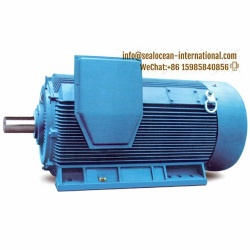 CHINA FACTORY SPECIAL PERMANENT MAGNETIC SYNCHRONOUS ELECTRIC MOTOR TYCX FOR BALL MILL, CHINA FACTORY ELECTRIC MOTOR, CHINA FACTORY IEC STANDARD SYNCHRONOUS MAGNET ELECTRIC MOTOR