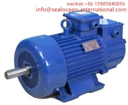 CHINA FACTORY CRANE ELECTRIC MOTORS SERIES MTF, MTN, MTF, 4MTN, MTKF, MTKN, MTKF FOR PUMP,FAN,BOILERS,MINING,STEEL AND METALLURGICAL PLANTS.CHINA CRANE ELECTRIC MOTORS FACTORY,CHINA ELECTRIC MOTORS FACTORY